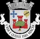 Logo da Grupo dos Amigos de Olivença